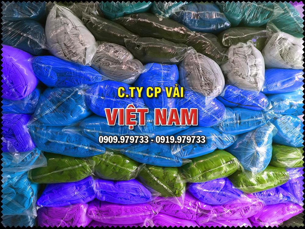 CTCP-VAI-VIET-NAM-1-17.png